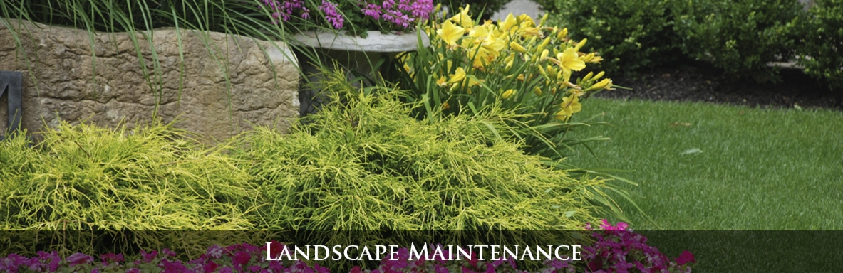 Lawn, tree, shrub, landscaping maintenance, mowing, snow removal, leaf removal and more